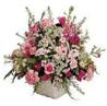 Postal de flores flores07.jpg