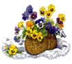Postal de flores flores09.jpg