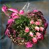 Postal de flores 3 flores23.jpg