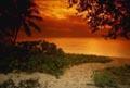 Postal de paisajes naturales paisaje17.jpg