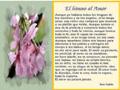 Postal de poemas 2 poesia96.jpg
